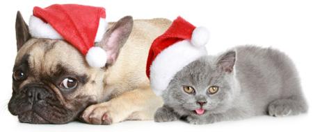 Frohe weihnachten und ein gutes neues jahr tiere